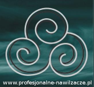 www.profesjonalne-nawilzacze.pl