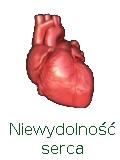 Leczenie niewydolności serca Vitafonem